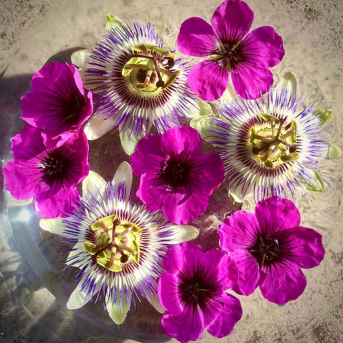 3rd Eye Chakra Floral Essence, 30ml