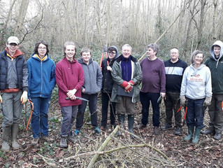 A lesson in Hazel coppicing in Spurrell's Wood and Sustead Common