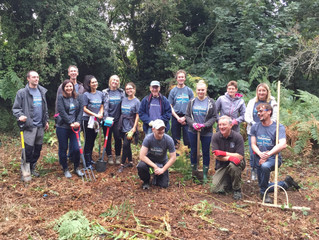 Corporate volunteering for conservation