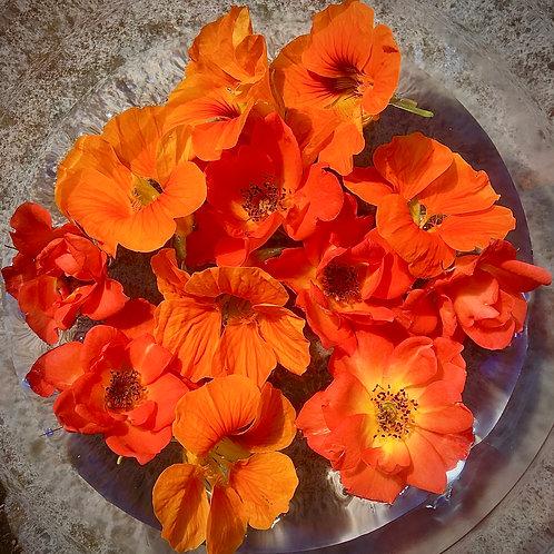 Sacral Chakra Floral Essence, 30ml