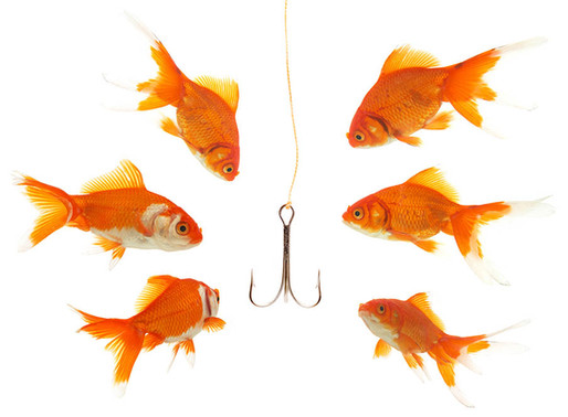Spear phishing and the art of the scam