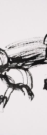Beets (ink)
