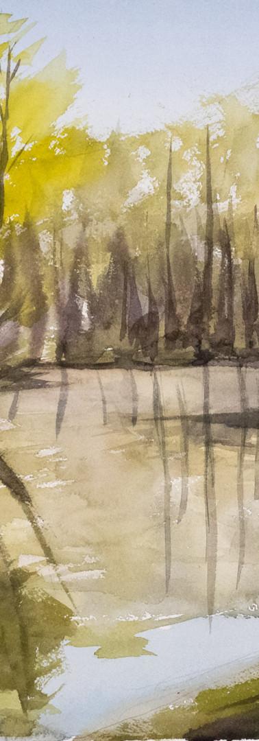 Pond at Simon's Rock