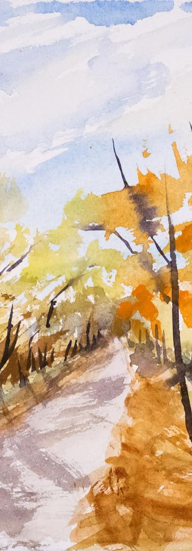 Back Road, Fall Colors