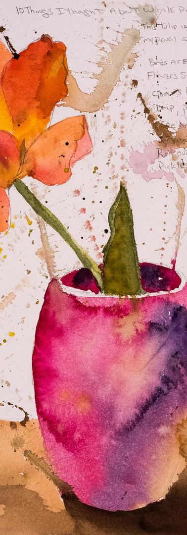 Splattering Tulip