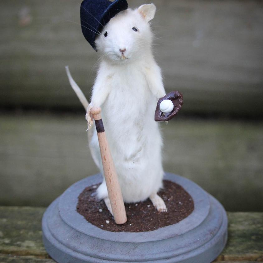 Rat Taxidermy Class