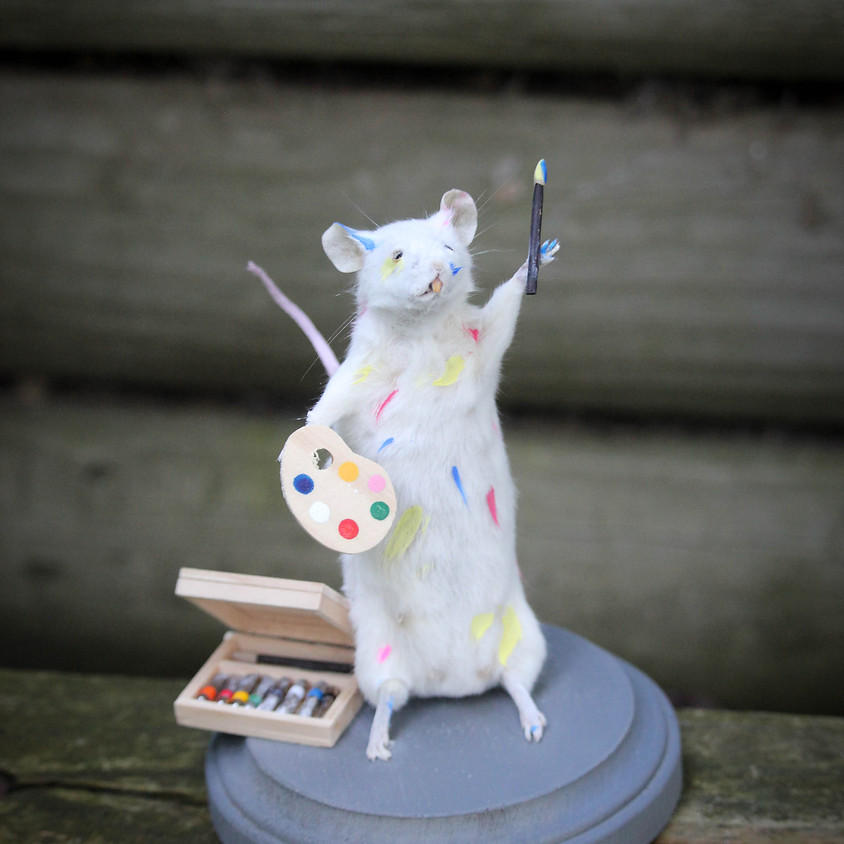 Mouse Taxidermy Class