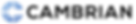 cambrian_only_logo_1600_300.png