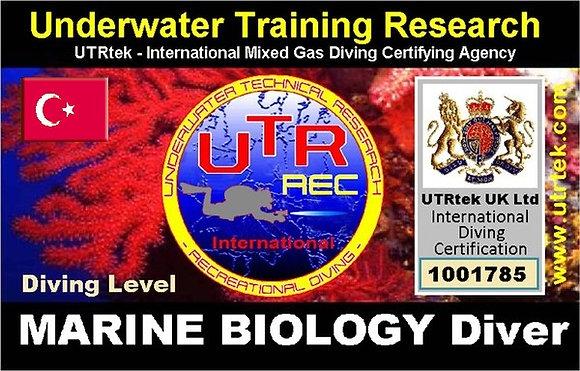 Marine Biology Diver