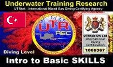 Intro to Basic Skills
