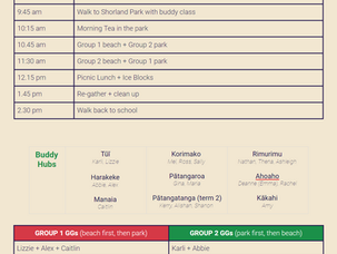School Picnic information for Monday 14 Dec