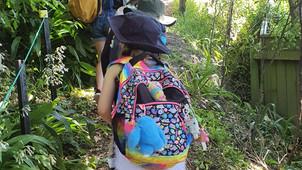 Harakeke Forest School