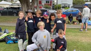 A day of crickety cricket!
