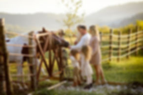 Ферма Экзархо, фотосессии, фотосессии с лошадьми, фотосессии с животными, фотосессии на природе, профессиональные фотосессии, фото для портфолио
