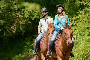 конные прогулки в горы, конный клуб, конный клуб Сочи