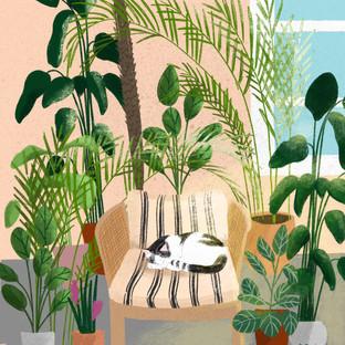 Plant - Cat.jpg
