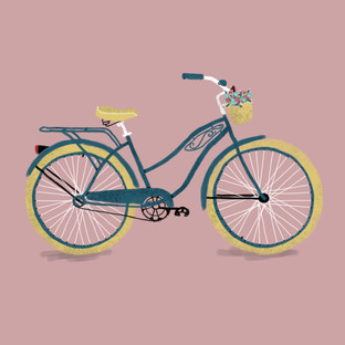 Transport - Bike.JPG