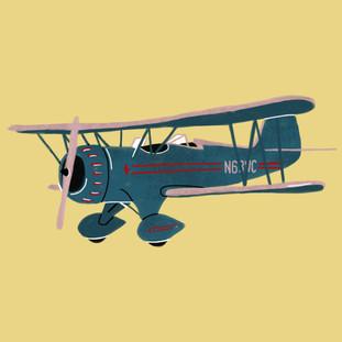 Transport - Plane.JPG