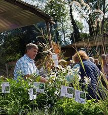 Plant Fairs Image.jpg