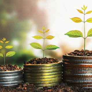 Managing your Working Capital through Accounts Receivable Financing