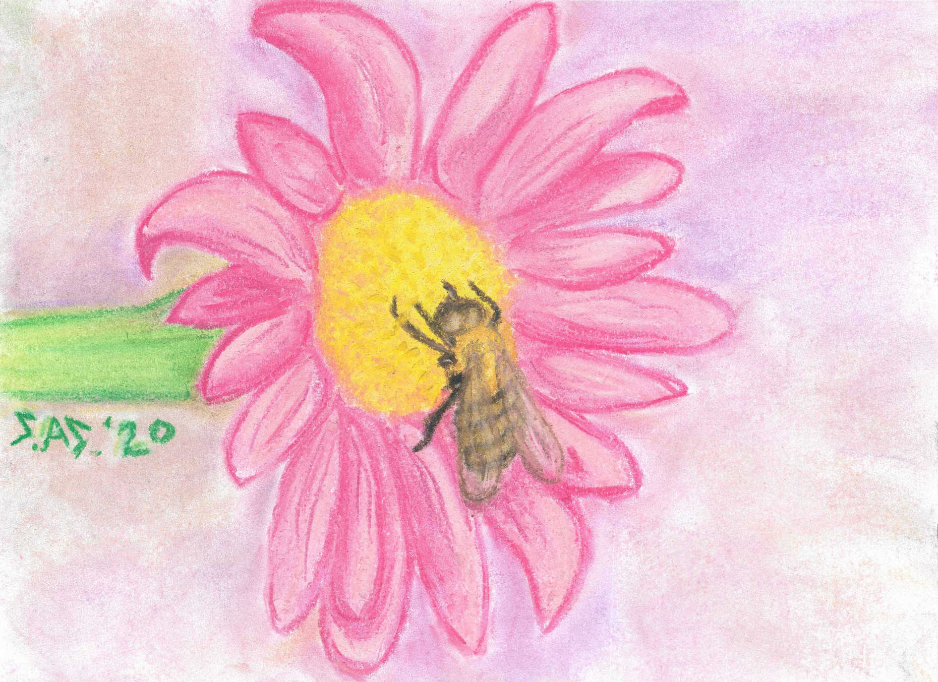Bee Happy in chalk pastel - Print/Original