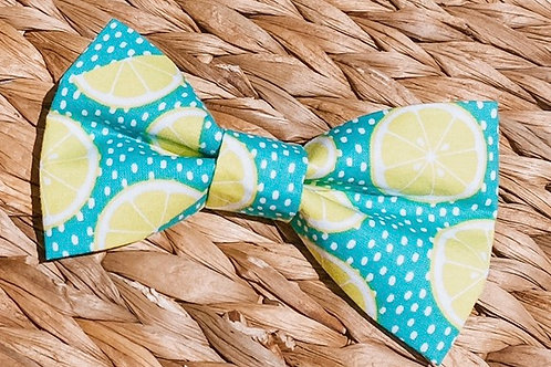 Main Squeeze Bow Tie