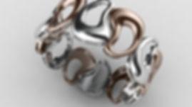 rhino3d-works (1).jpg