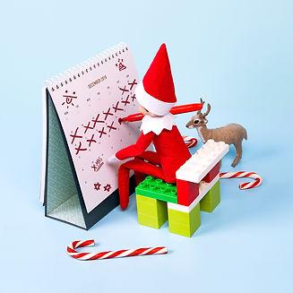 MIRV0024 Elf on the Shelf Photography_ca