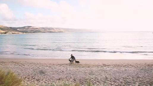 Apollo Bay - Great Ocean Road