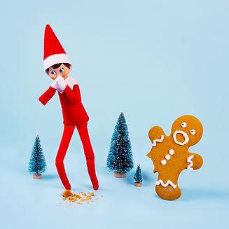 MIRV0024 Elf on the Shelf Photography_Gi