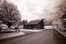 countrylifefallintoart.jpg