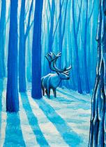 Midnight Reindeer
