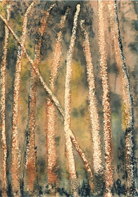 Trees (ink) © Elizabeth Young