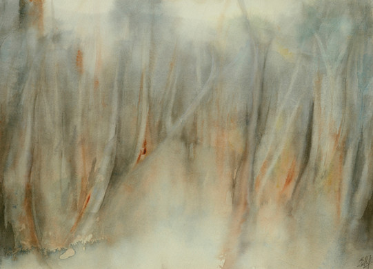 Winter Mists © Elizabeth Young
