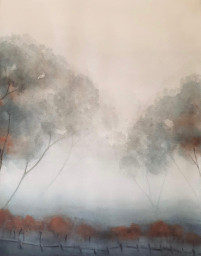 Mists in the Centennial Vineyard © Elizabeth Young