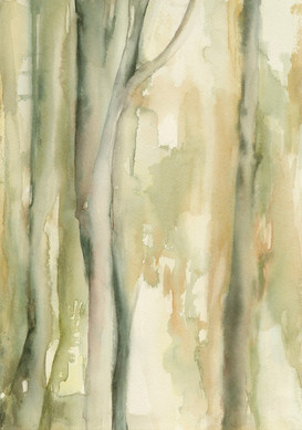 Enchanted Forest (watercolour) © Elizabeth Young