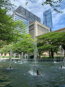 south-garden-art-institute-chicago-movie-tours.jpeg