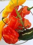 5islandblend pepper sauce