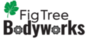 Fig Tree Bodyworks leaf logo 20191105 (1