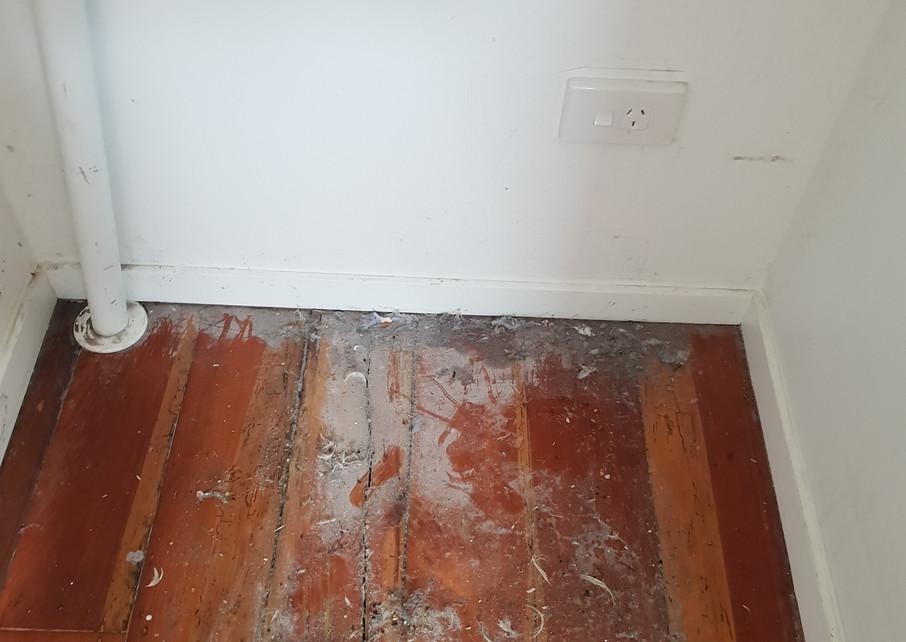 Floor under fridge before clean