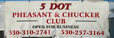 5 Dot Pheasant & Chukar Club