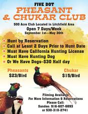 Five Dot Pheasant & Chukar Club - Poster