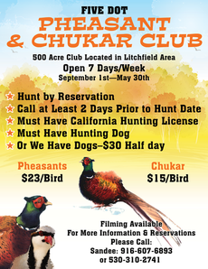 Five Dot Pheasant & Chukar Club - Poster