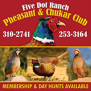 Five Dot Ranch Pheasant & Chukar Club