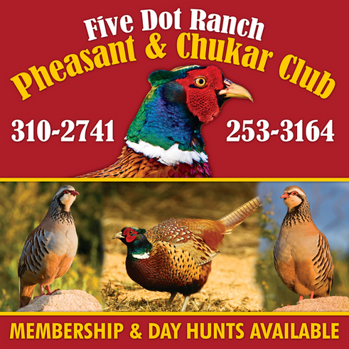 Five Dot Pheasant & Chukar Club
