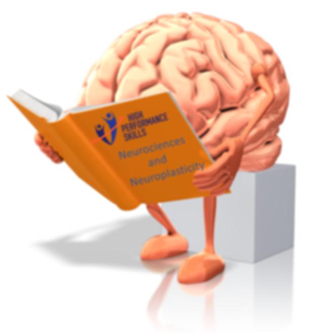 Neuroplasticidade