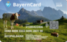 BayernCard Beispiel.png