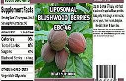 Australian Blushwood Berry