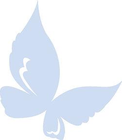 Tint Butterfly.jpg