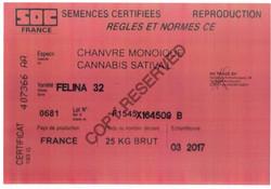 EU.card_Felina.32